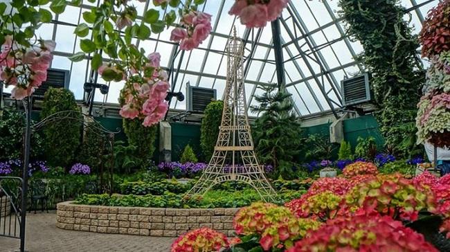 Amour De Paris Show Ends at Muttart