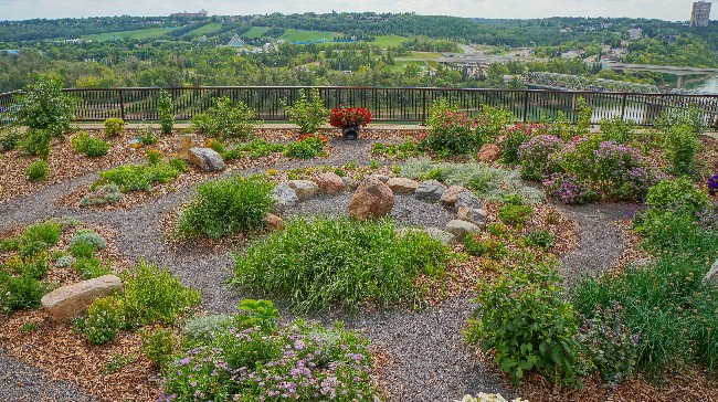 Medicine Wheel Garden Opens Downtown