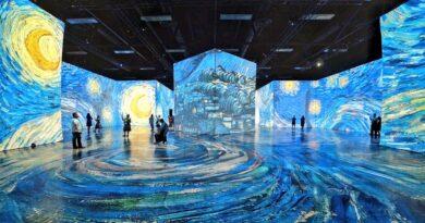 Imagine Van Gogh Opens in Edmonton